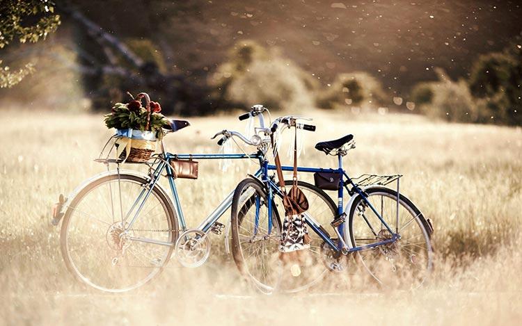 Pešačke i biciklističke staze Zlatibora