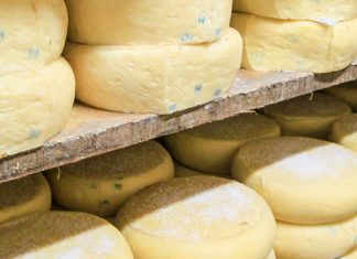 Treći Festival sira